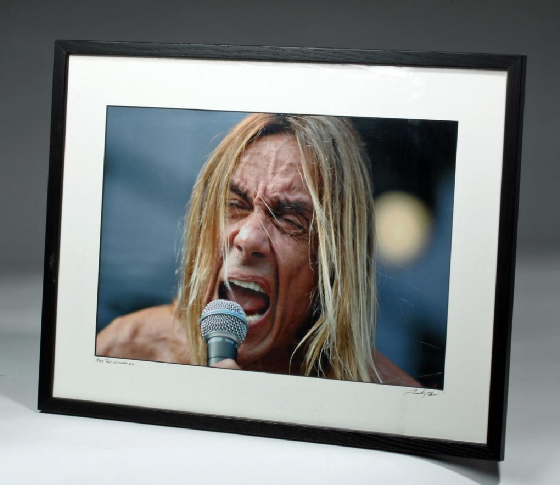 """Iggy Pop"" by Tim Hiatt, signed by Artist - 4"