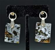Pallasite Meteorite Earrings w Silver Sapphires pr