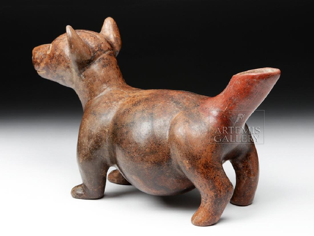 Adorable Colima Redware Dog - Museum Exhibited - 4