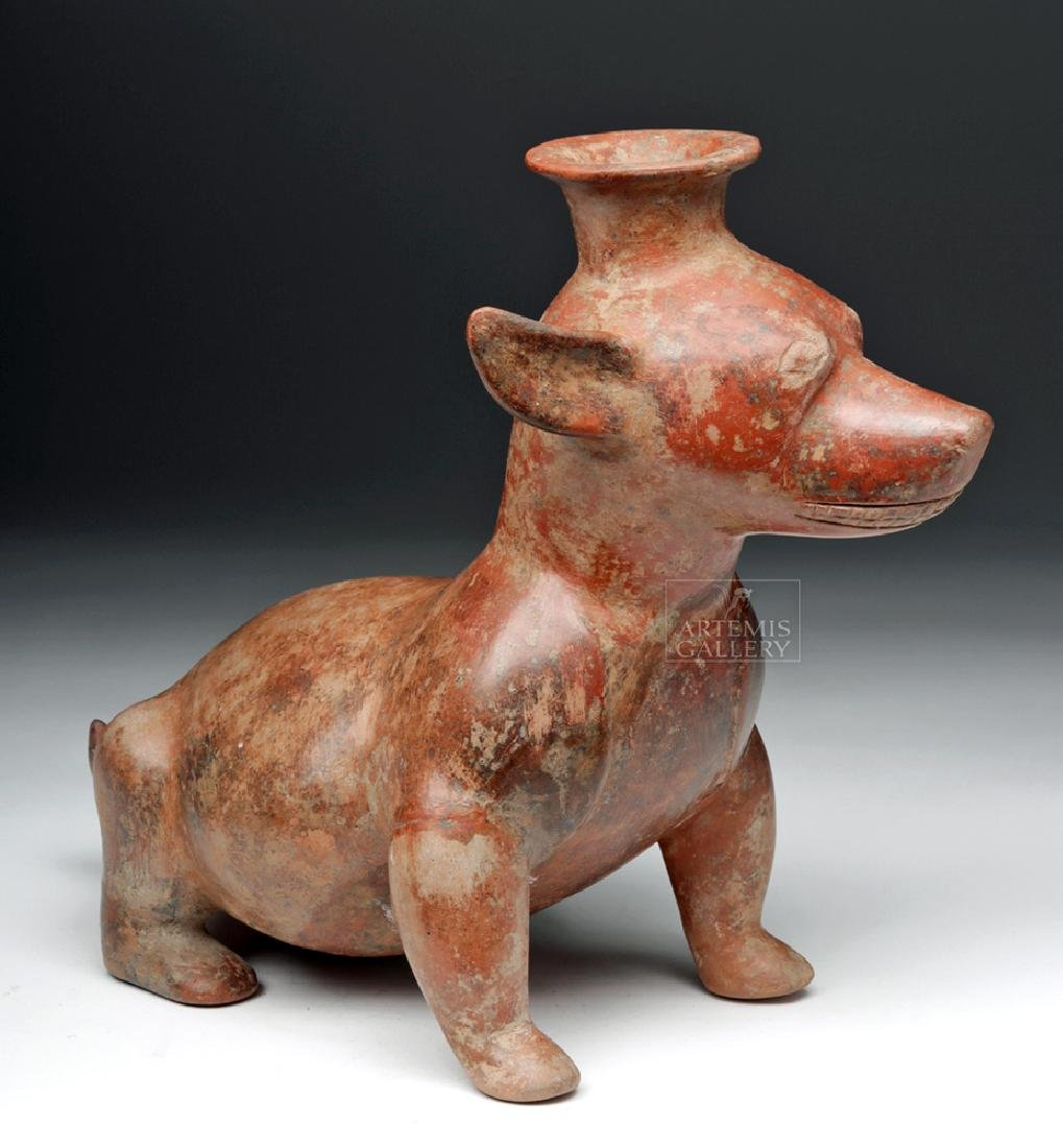 Attractive Colima Seated Pottery Puppy Effigy