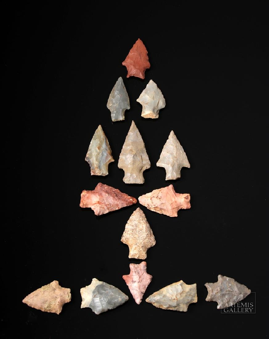 Fourteen Native American Stone Projectile Points