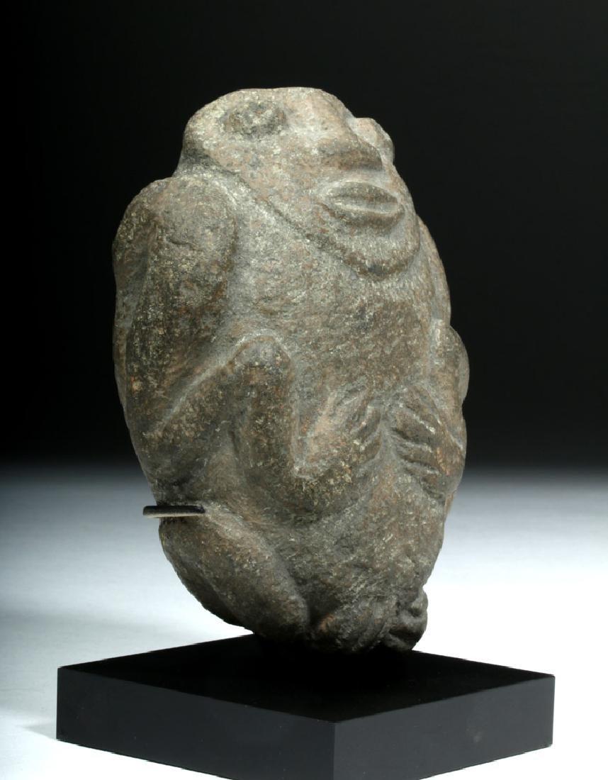 Pre-Columbian Colima Stone Figural Axe God - 5