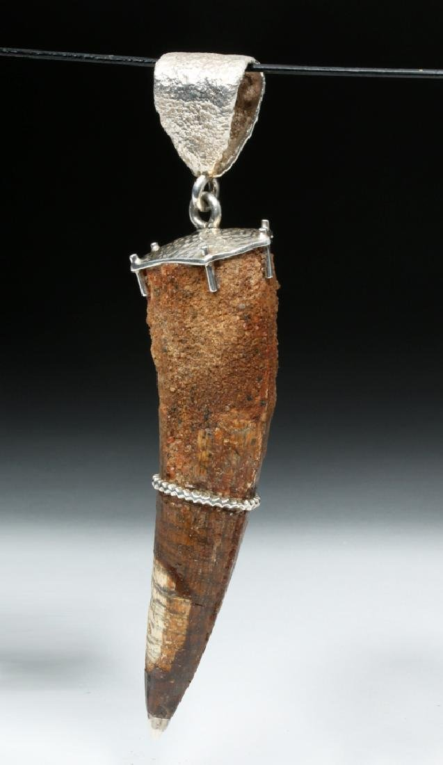 Large Spinosaurus Tooth w/ Silver Pendant - 3