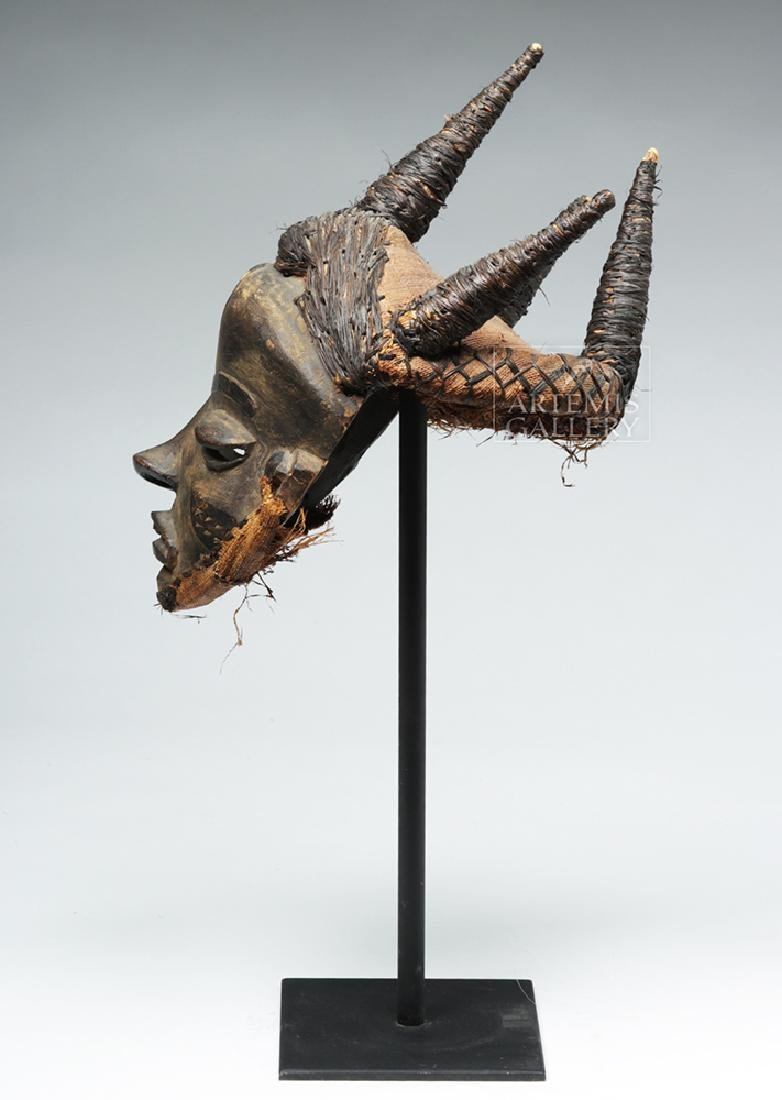 Early 20th C. D. R. Congo Pende Wood Chief Mask - 4