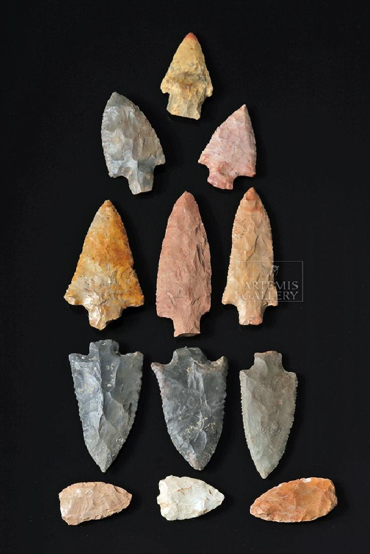 Twelve Native American Arrowheads and Spearpoints