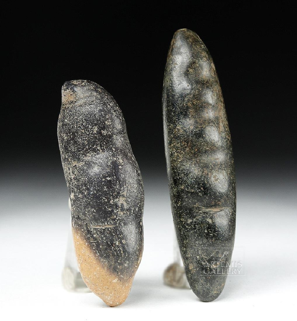 Pair of Chavin Carved Stone Hallucinogenic Seed Pods - 3
