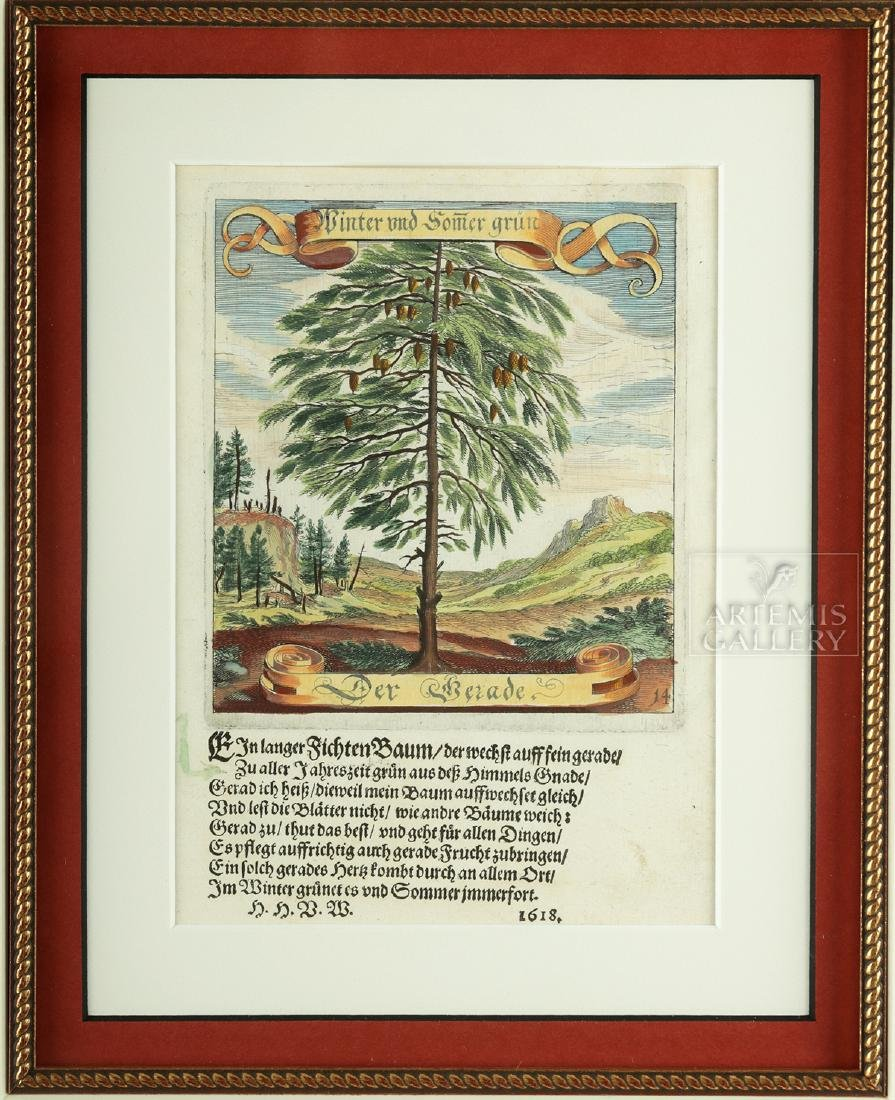 17th C. German Hand-Colored Copper Plate Engravings - 2