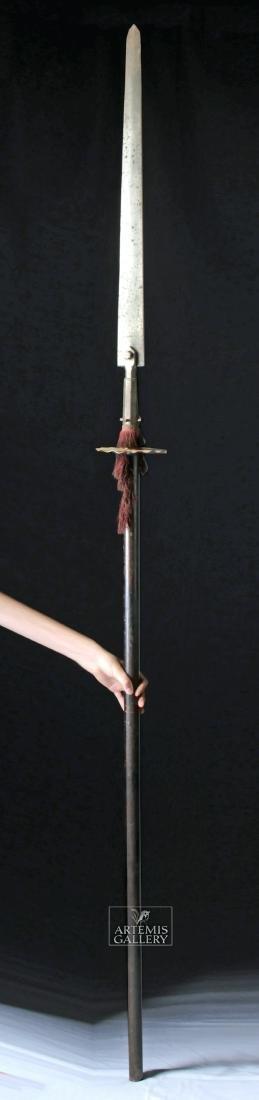 17th C. European Wood / Iron Polearm,  Ox Tongue Spear - 2