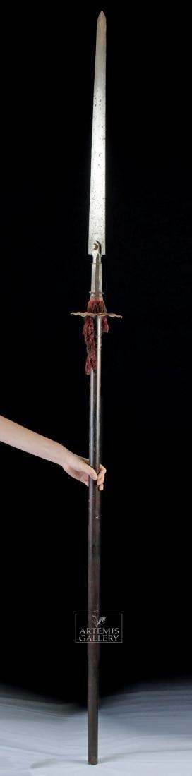 17th C. European Wood / Iron Polearm,  Ox Tongue Spear - 3