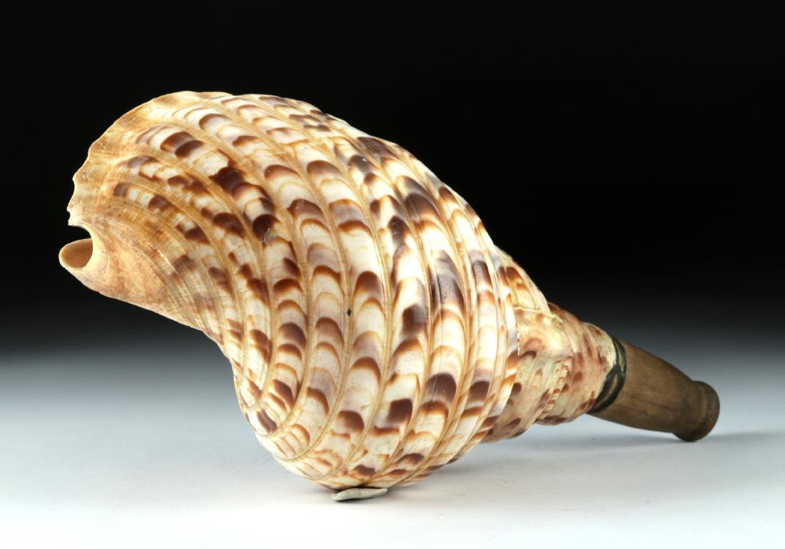 "Early 20th C. Japanese Shell Horagai ""Samurai Horn"" - 3"