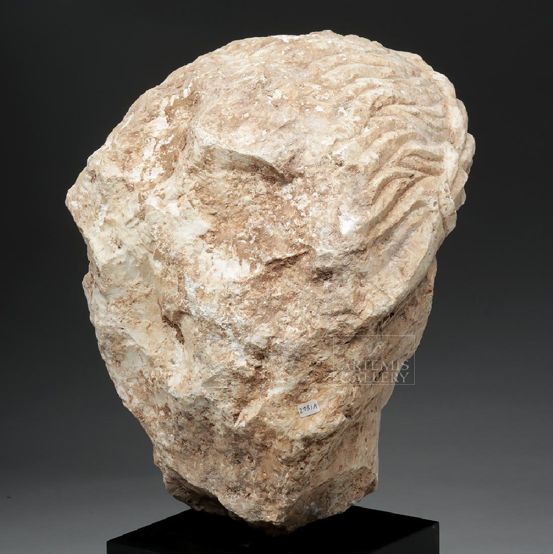 Lifesize+ Palmyrene Limestone Head - Masterpiece! - 4