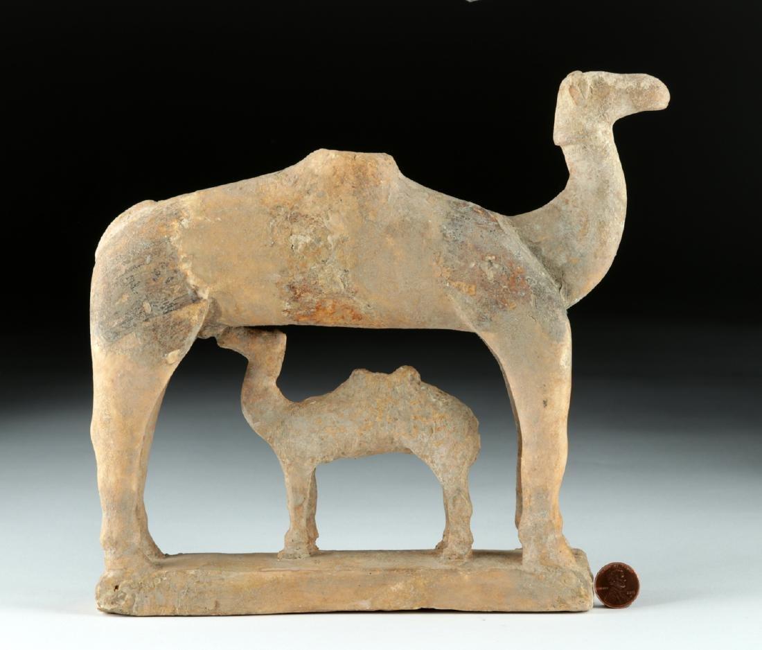 Rare S. Arabian Terracotta Camel and Baby - 4