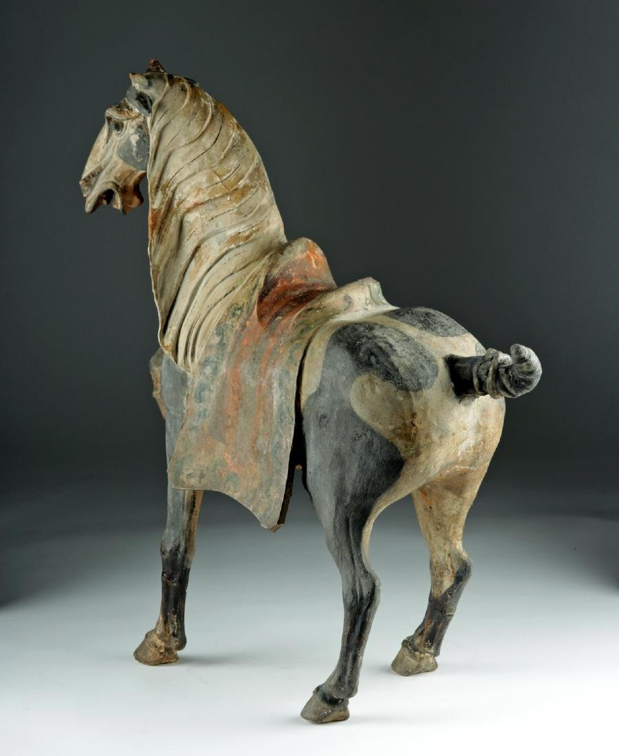 Chinese Tang Dyn Pottery Horse w/ TL, ex-Sotheby's - 3