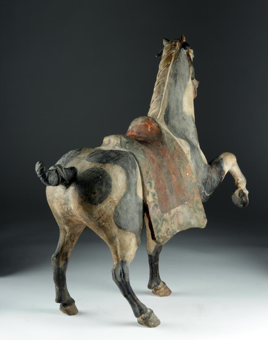 Chinese Tang Dyn Pottery Horse w/ TL, ex-Sotheby's - 4