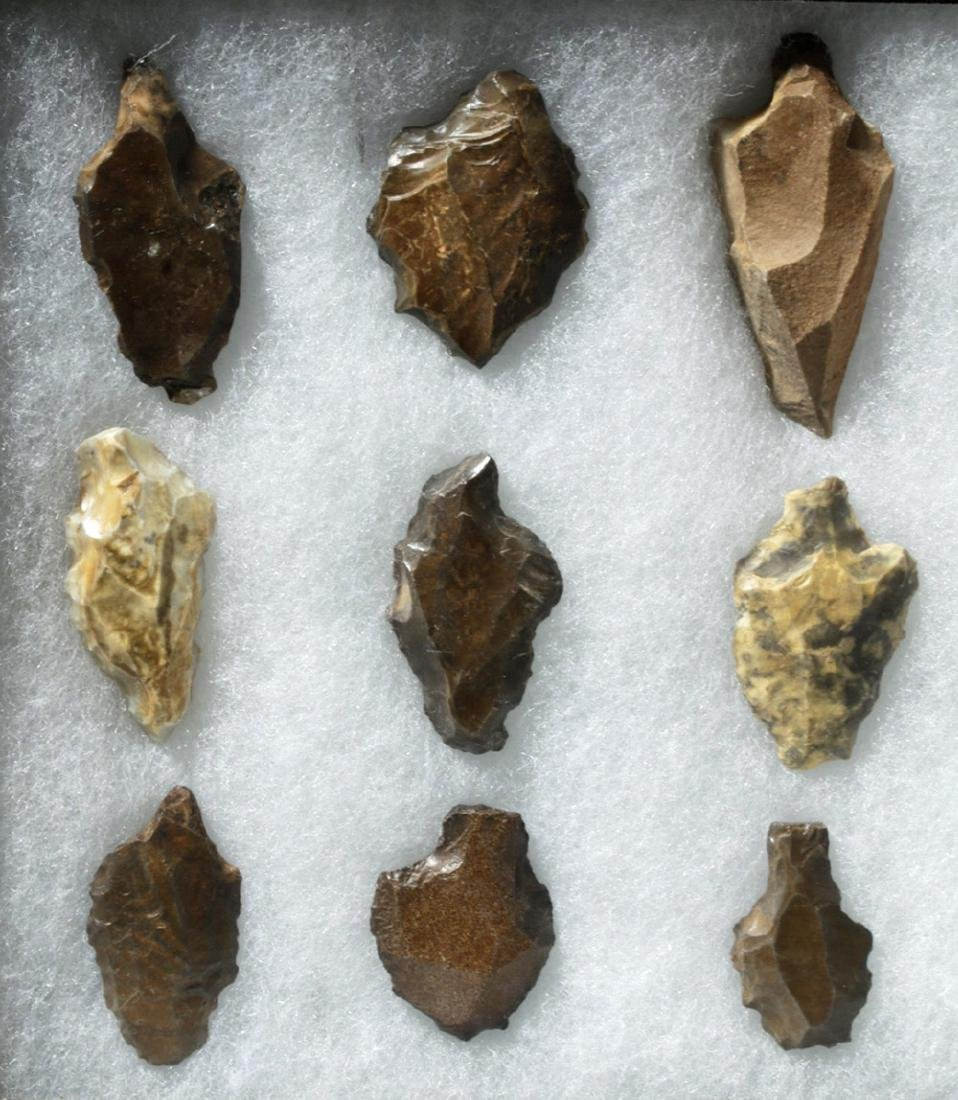 Collection of 15 North African Aterian Stone Tools - 2