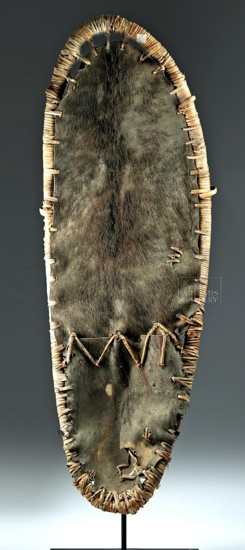 Large Early 20th C. Papua New Guinea Pig Skin Shield - 2