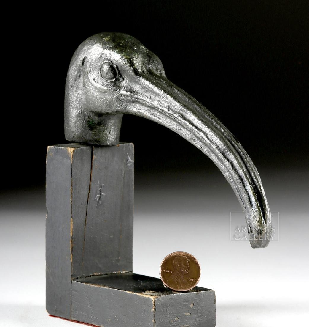 Large Egyptian Bronze Ibis Head - 2