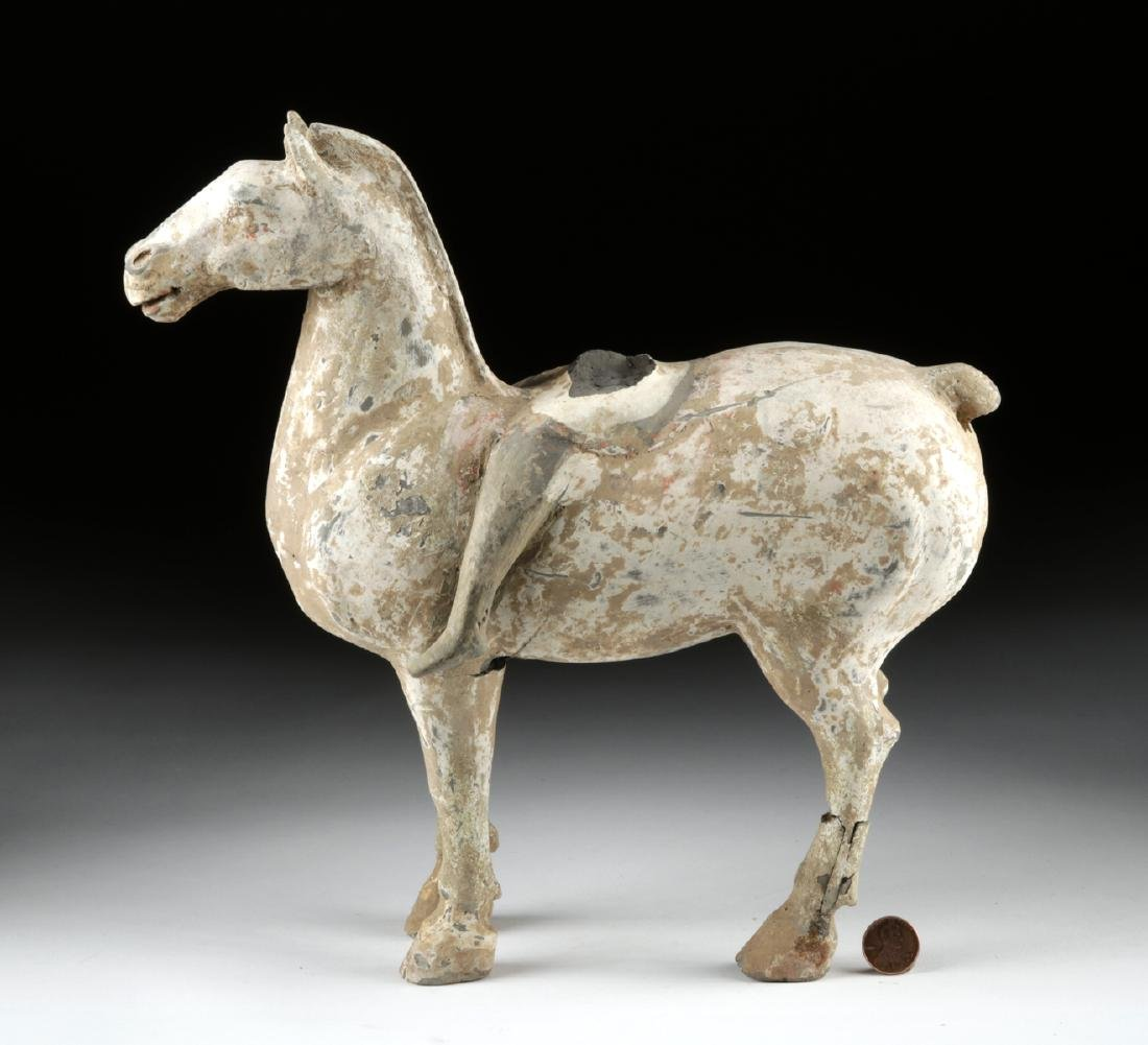 Chinese Tang Dynasty Pottery Horse w/ TL