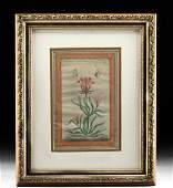 Framed 18th C Islamic Painting  Floral Study