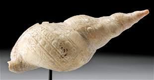 Maya Mollusk Shell Intricate Incised Details