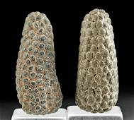 2 Inca Terracotta Maize Talismans
