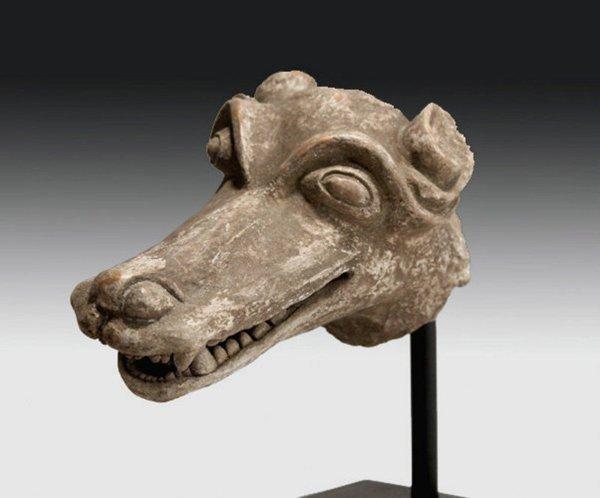 102: Pre-Columbian Aztec Coyote Head