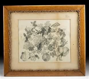 Framed Antique Etching - Fruit, Birds & Butterflies