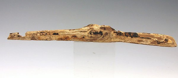 67: An Egyptian Gilt Wood Head of an Ibis, Late Period