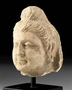 Ancient Gandharan Stucco Buddha Head