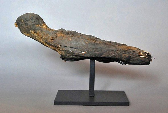 34: An Egyptian Mummifed Hawk