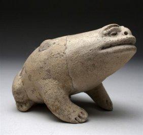 An Olmec Las Bocas Terracotta Frog - Rare!