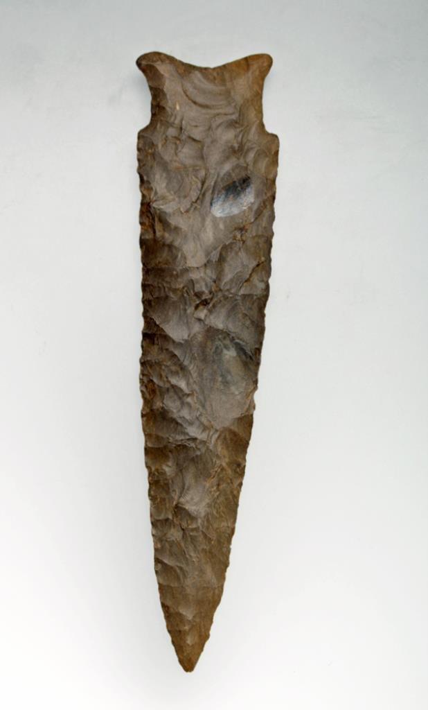 Prehistoric Indian Dalton-Hemphill Point