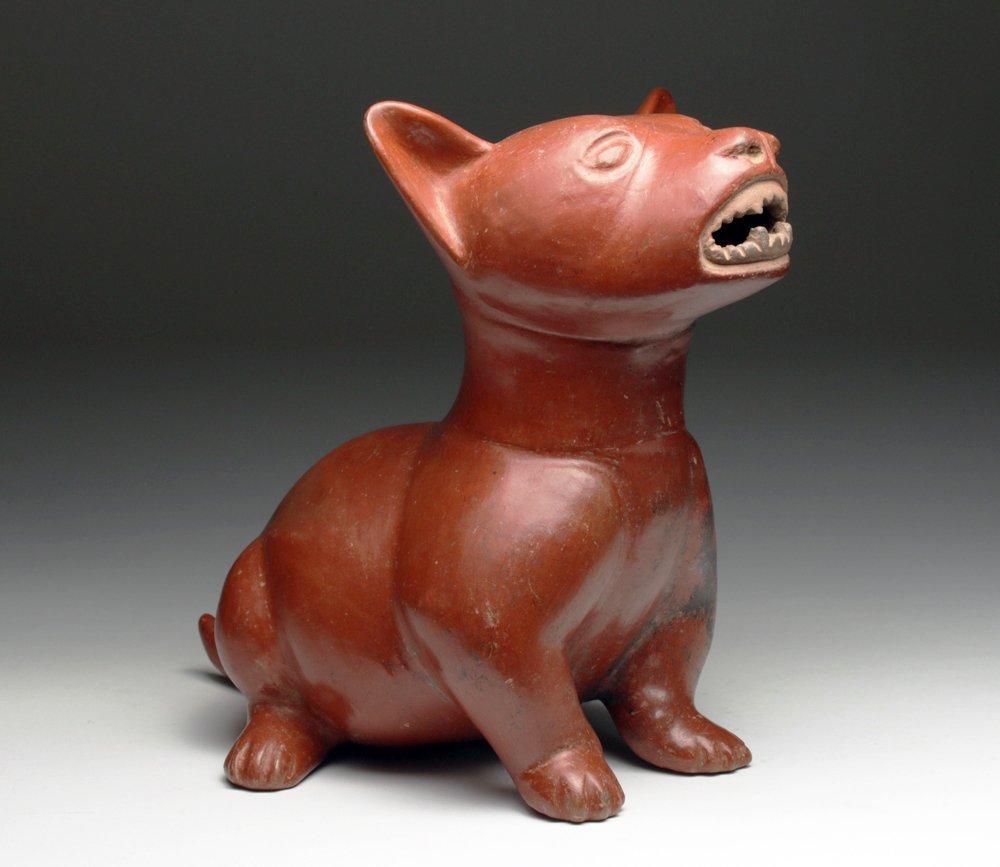 Huge Pre-Columbian Colima Dog - Superb!
