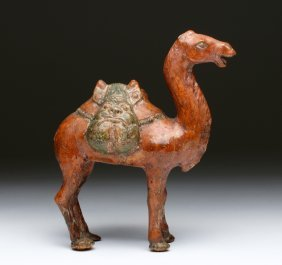 Chinese Tang Dynasty Sancai Glazed Camel
