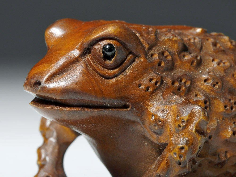 Japanese Meiji Period Boxwood Netsuke - Frog - 5