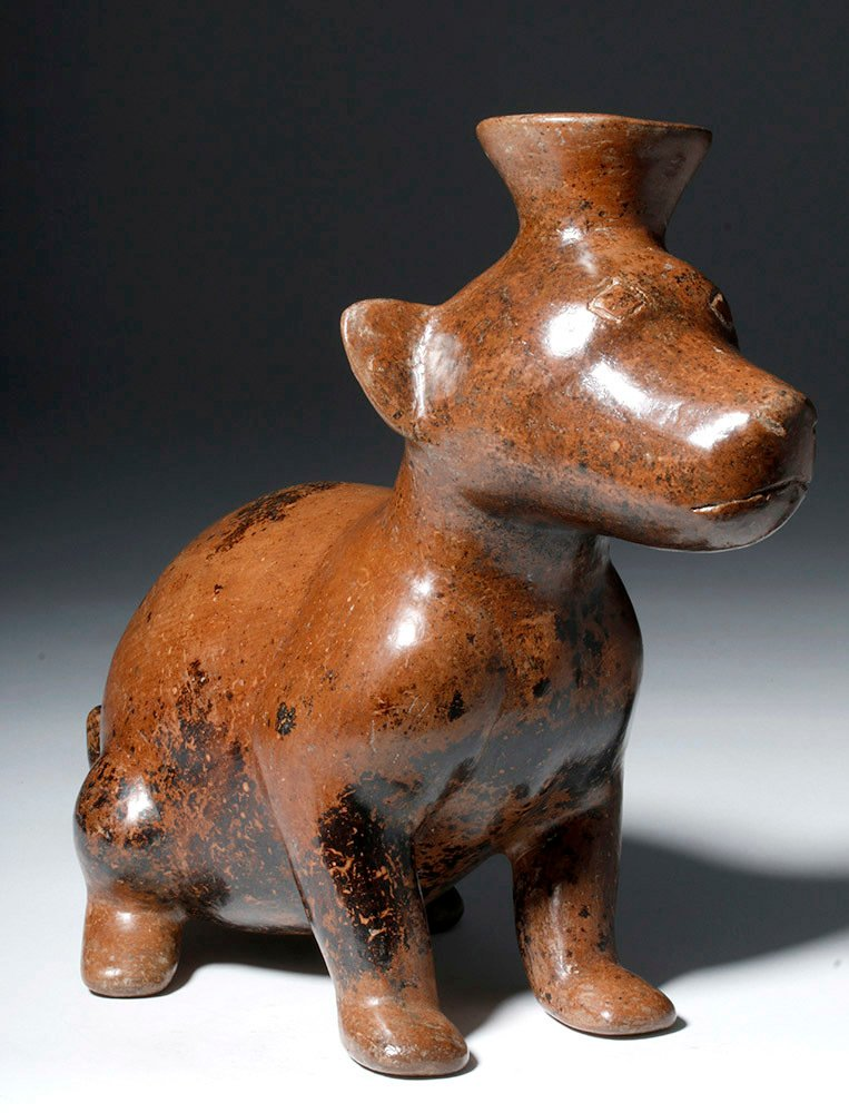 Adorable Colima Pottery Seated Dog - 4