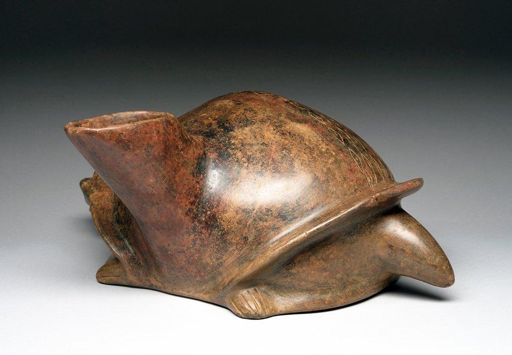 West Mexico Colima Redware Turtle - 3