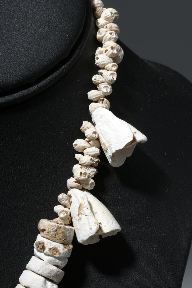 Museum Exhibited Pre-Columbian Toltec Shell Necklace - 3