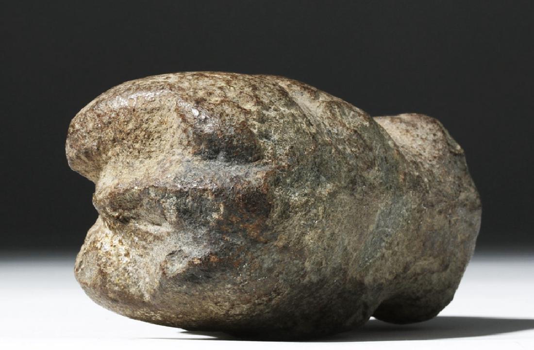 Rare Colima Basalt Standing Jaguar - 7