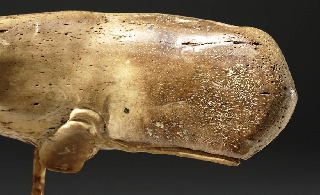 19th C. North Atlantic Bone Carving of Whale - 6