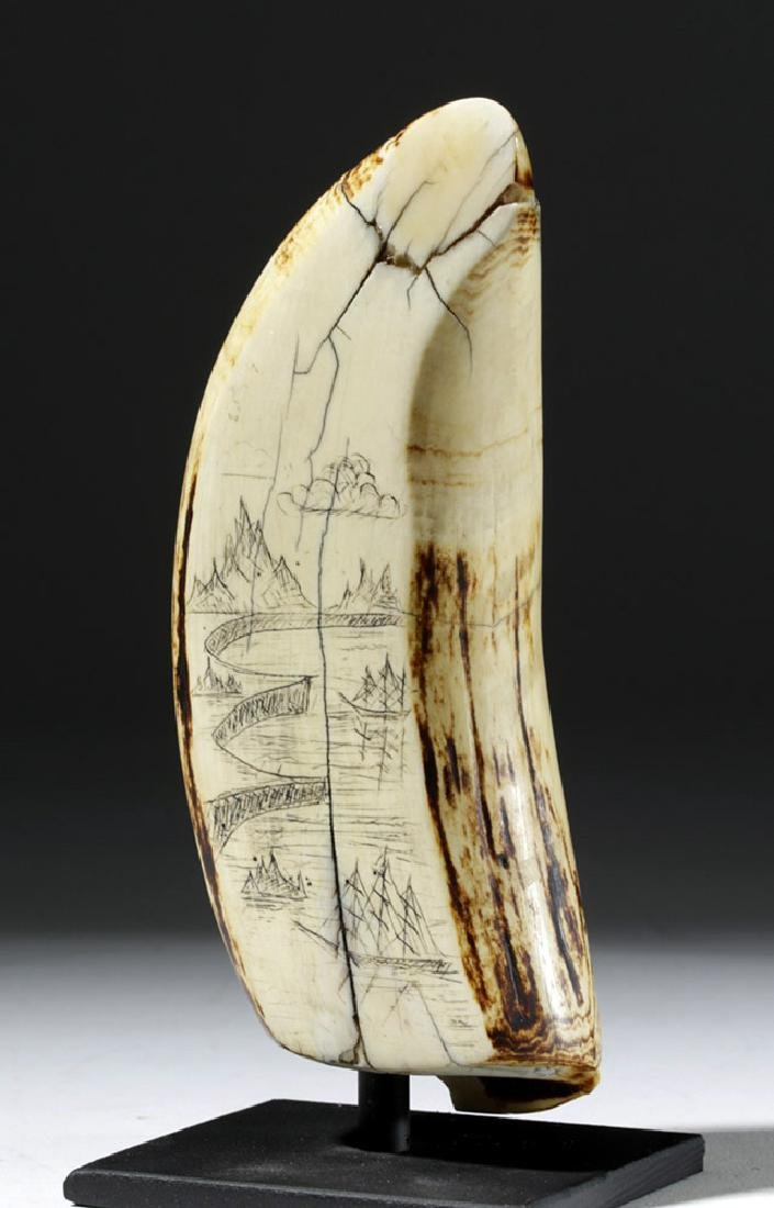 19th C. Sperm Whale Tooth Scrimshaw - Incised w/ 1851