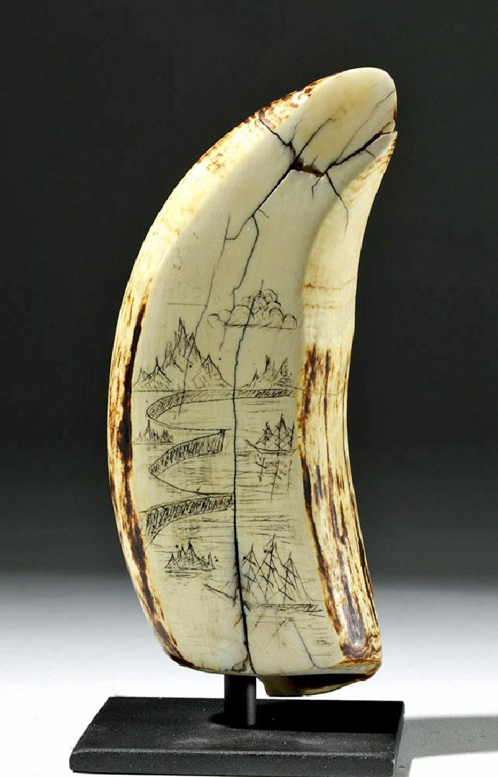 19th C. Sperm Whale Tooth Scrimshaw - Incised w/ 1851 - 6