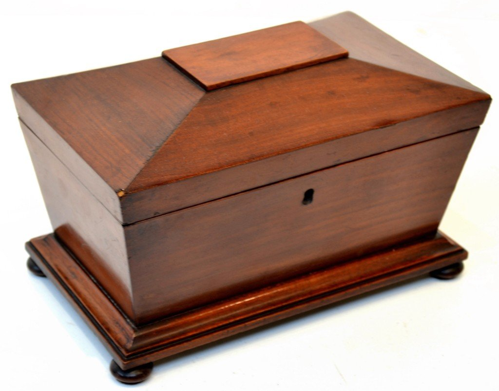 14: A 19TH CENTURY MAHOGANY TEA CADDY