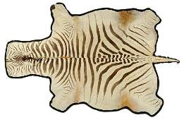A MID-CENTURY MODERN VINTAGE MOUNTED ZEBRA HIDE