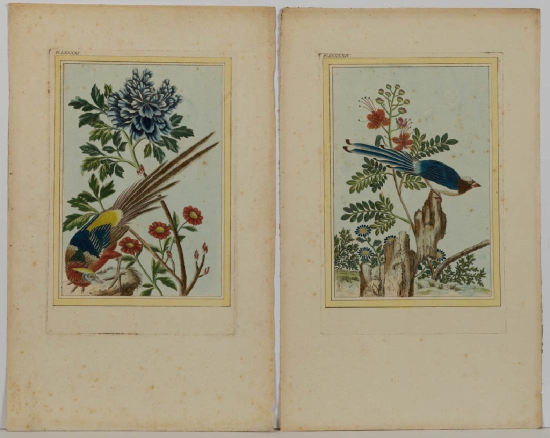 CHINESE / ASIAN ORNITHOLOGICAL PRINTS, LOT OF FOUR