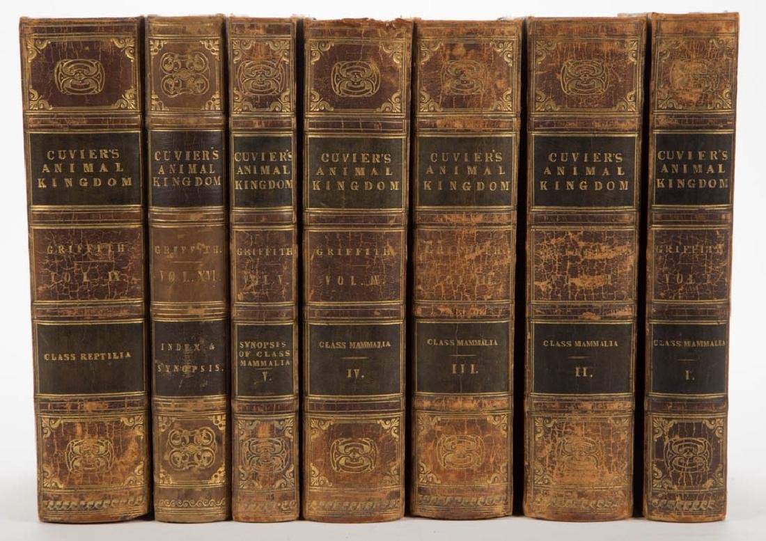 NATURAL HISTORY / ZOOLOGY HISTORICAL VOLUMES, SET OF