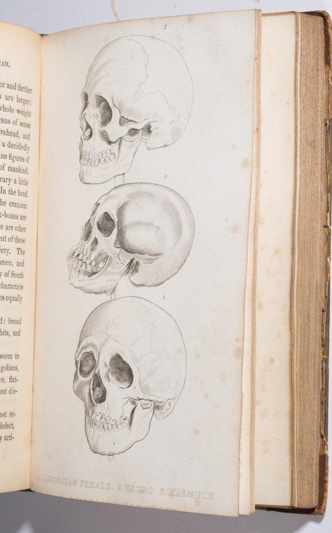 NATURAL HISTORY / ZOOLOGY HISTORICAL VOLUMES, SET OF - 4