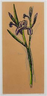 "DAVID BATES (AMERICAN / TEXAS, B. 1952) ""IRIS"" PRINT"