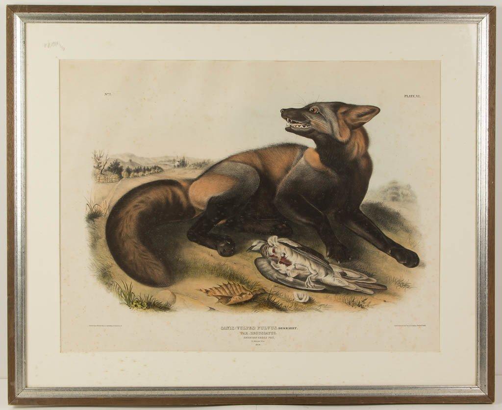 JOHN JAMES AUDUBON (AMERICAN, 1785-1851) NATURAL