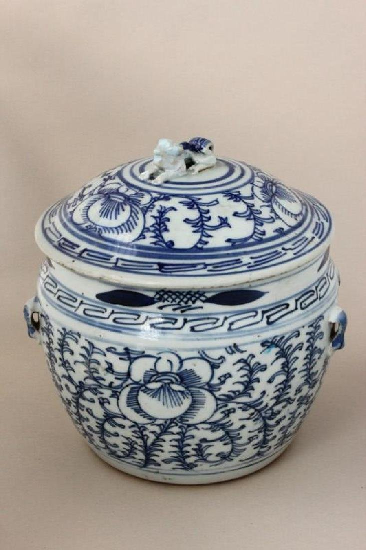 Qing Dynasty Blue and White Porcelain Jar and